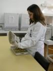 Laboratório de Bromatologia da Unijuí Agosto 2012 Foto Jaqueline Peripolli